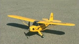 spotlight flyzone rc piper j 3 cub rtf