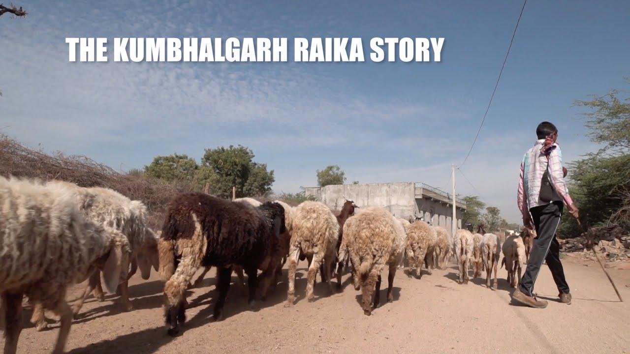 The kumbhalgarh Raika story
