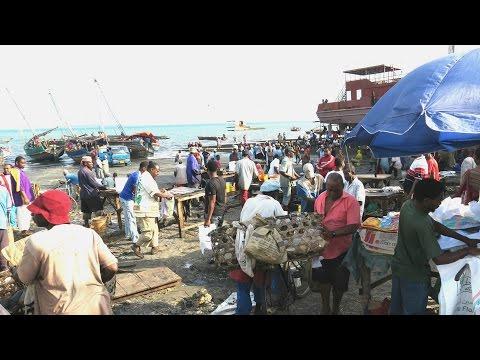 Malindi Fish Market, Zanzibar, Tanzania