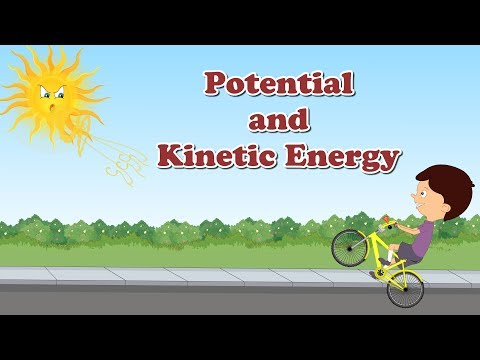 Potential and Kinetic Energy for Kids | #aumsum #kids #education #science #learn