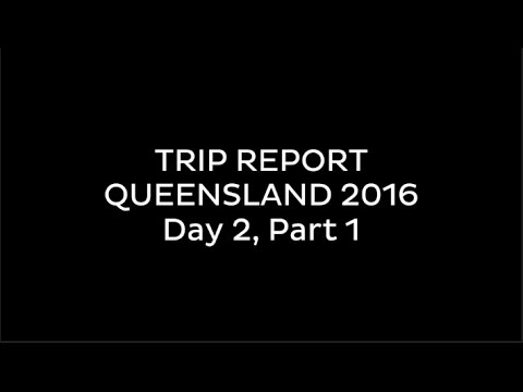 TRIP REPORT: Gold Coast 2016 (Day 2, Part 1)
