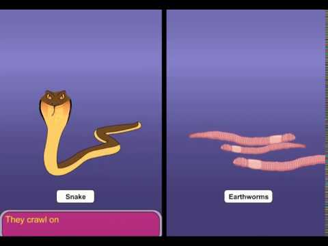 Snakes and Earthworms