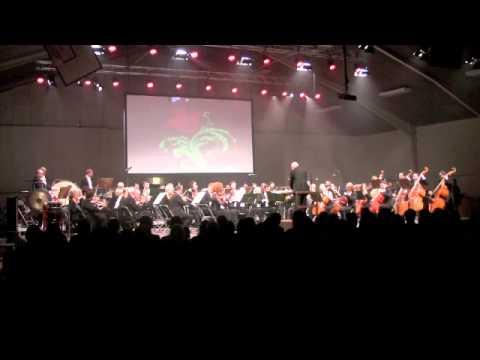 Vinterkoncertsymfoni -2