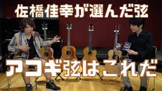 佐橋佳幸氏の使用アコギ弦!! 名曲「TRUE LOVE」で使われたJ50で弾き比べ!!