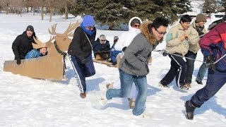 Human Powered Dog Sled - Corporate Explorer Training Team Building Program