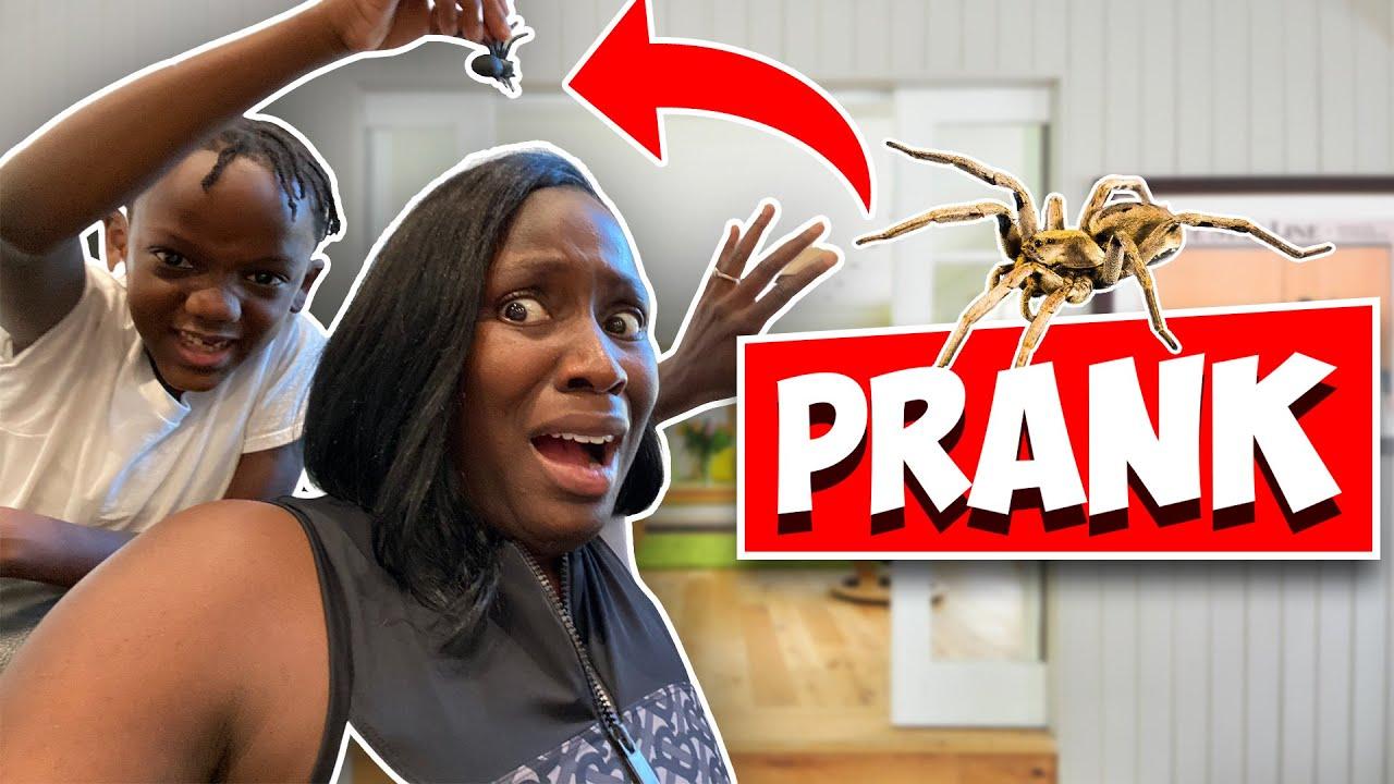 Siah Put A SPIDER On My Head!
