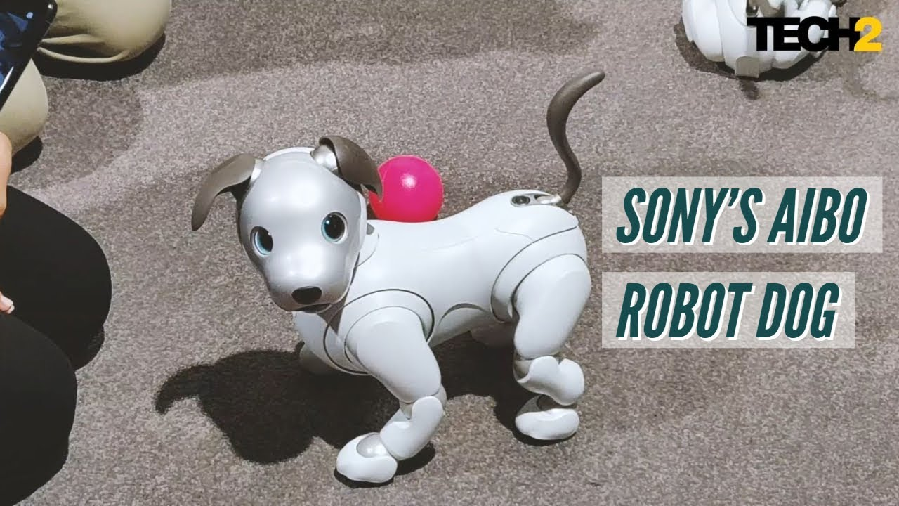 Sony's Aibo robot dog is just too cute | IFA 2018 - Tech