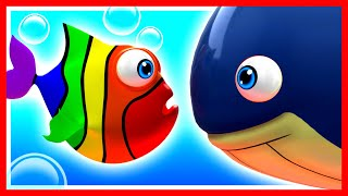 Learn Opposites with Rainbow Fish, Kids learn Big, Small, Inside, and Outside.