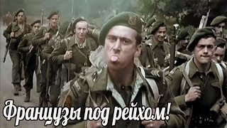Почему французы так быстро и позорно сдали Гитлеру свою страну?