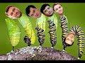 Личинки ағашек: дети приближенных Назарбаева / БАСЕ