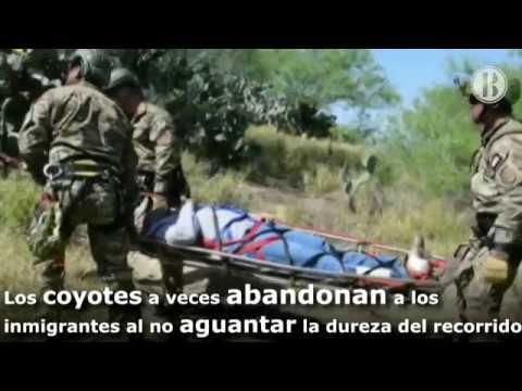Peligros en la Frontera de México