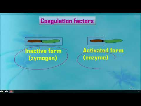 Coagulation System