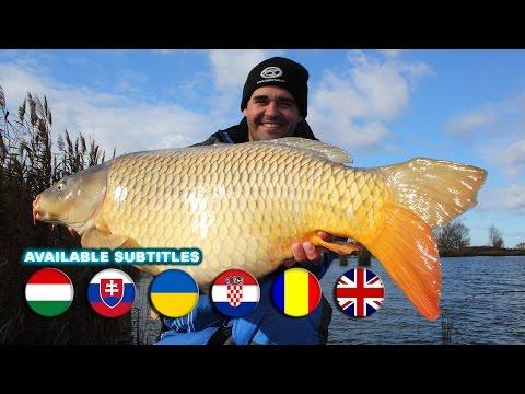 Sipos Gábor - Új generációs csalik a nagyhalas horgászatokhoz