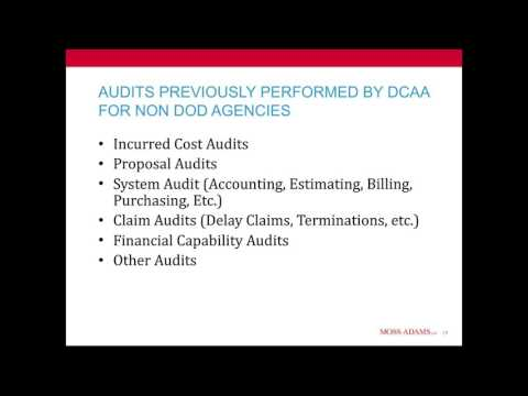 Performing Government Contract Audits—without the DCAA
