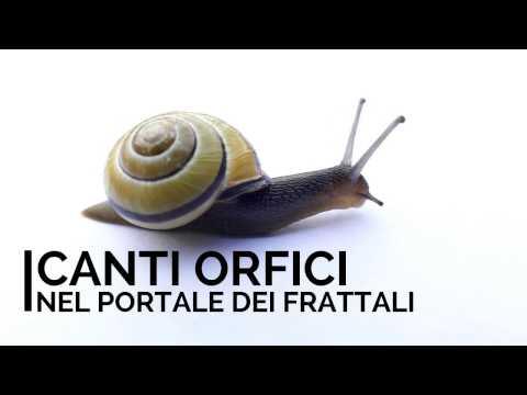 CANTI ORFICI - Nel portale dei frattali