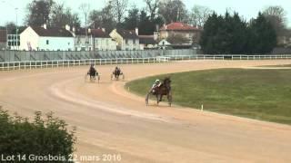 Lot 14 Grosbois 22 mars 2016