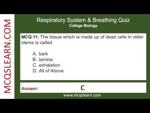 Respiratory System & Breathing Quiz - MCQsLearn Free Videos
