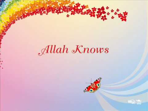 Zain Bhikha / Allah Knows / Flowers are Red