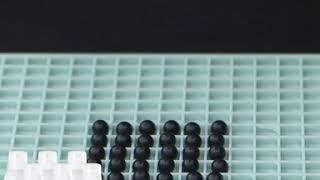 스파쿨링 샴푸 사은품 대박 증정 여름 세일!