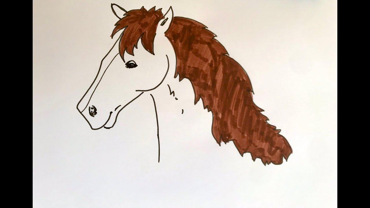 Download Pferd malen, Pferdekopf zeichnen für Anfänger und Kinder, PIVI PUNTE drawings