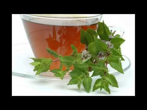 Organic Peppermint Herbal Tea - Caffeine-free; Peppermint Tea for Stomach Bloating