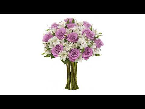 best-valentines-day-reviews!-benchmark-bouquets-elegance-roses-and-alstroemeria,-no-vase-(fresh-c..