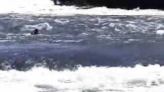 Bujagali Falls swimmer 2