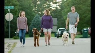 Hip & Knee Joint Preservation    Britt's Story   Aurora BayCare Orthopedics
