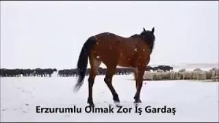 Erzurumlu Omak Zor Gardaş