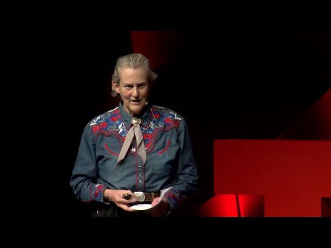 Educating Different Kinds of Minds | Temple Grandin | TEDxCSU