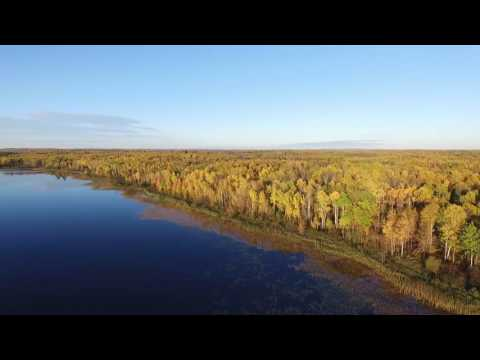 DJI Phantom 3 Professional Lake Flyover- Minnesota Fall