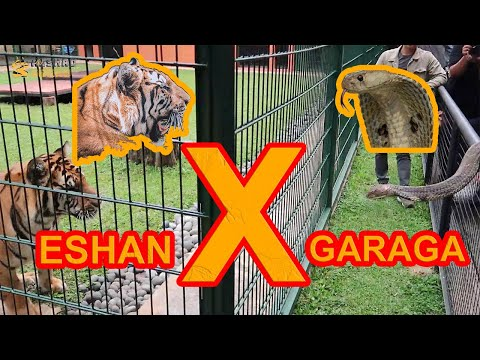 ESHAN X GARAGA ! Feat Panji Petualang, Irfan Hakim, Ezron, Dream Team (Part 2/2)