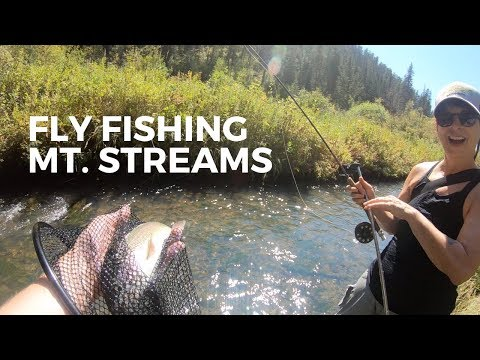 Mystic Fly Fishing: South Dakota Trout Streams 2018