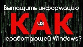 Как вытащить информацию из неработающей Windows?