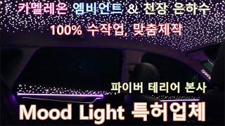 택시영업의 비밀(Feat. 파이버테리어)  2021 현…