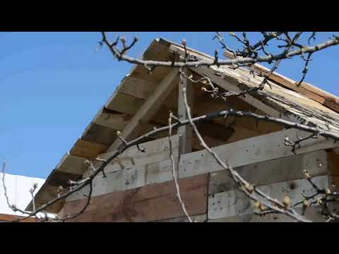 Как построить бюджетный курятник на даче