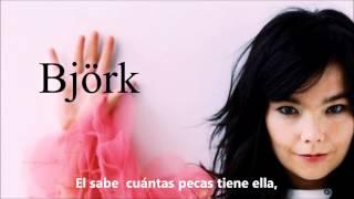 Birthday - The Sugarcubes (Björk) con subtítulos