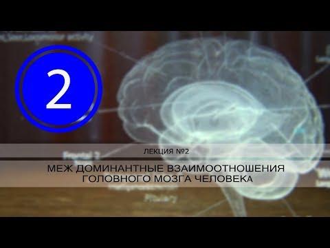РАК и междоминантные взаимоотношения головного мозга человека. Лекция №2