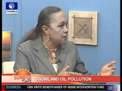 sd briggs on ogoniland oil pollution pt2 080811