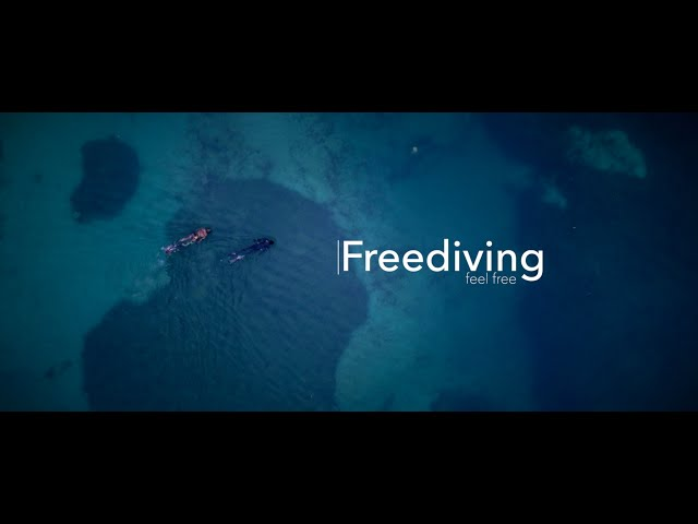 The freedom of freediving