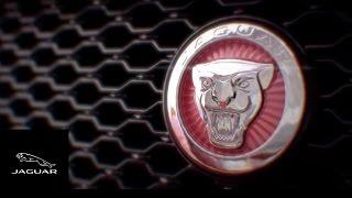 فيديو: جاكوار ترينا التصميم الجانبي لسيارة الكروس أوفر F-Pace الجديدة