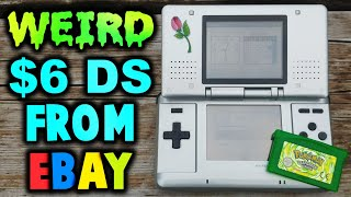 I got this weird $6 Nintendo DS from eBay...
