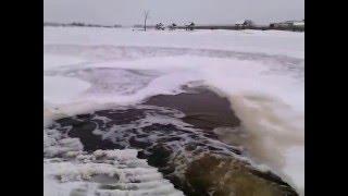 платная рыбалка пруд Черноморец ,зимовка: 01.01.2016г..