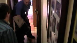 Robinson Dog Training And My New Czech Gsd Lik