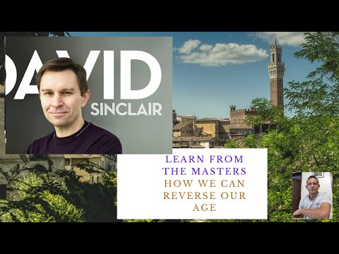 david-sinclair-on-how-to-reverse-your-age