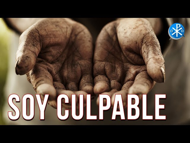 Soy Culpable   Perseverancia - P. Gustavo Lombardo