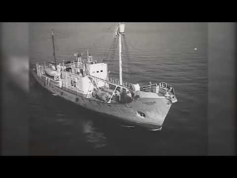 Возвращение в Калининградской порт антарктической китобойной флотилии YURIY DOLGORUKIY - IMO 5397109