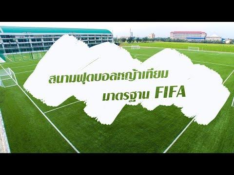 สนามฟุตบอลมาตรฐาน FIFA ขนาด 11 คน