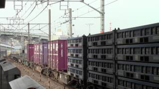 東海道本線1250列車(名古屋タ~半田埠頭)EF510-510
