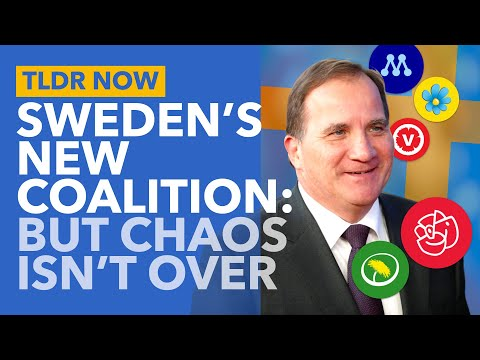 Sweden Gets a New Government... but the Political Crisis isn't Over Yet - TLDR News